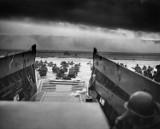 [LĄDOWANIE W NORMANDII] 71. lat temu rozpoczął się desant w Normandii [D-DAY VIDEO]
