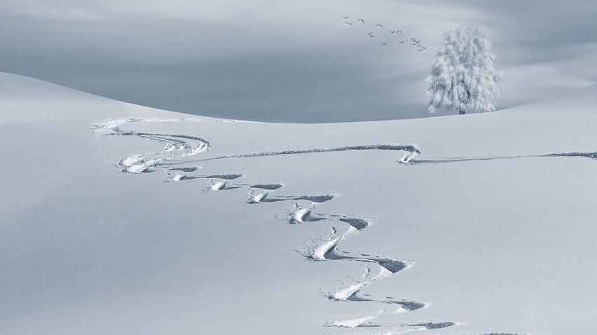 Sennik śnieg Co Znaczą Sny Poznaj Znaczenie Symbolu śnieg