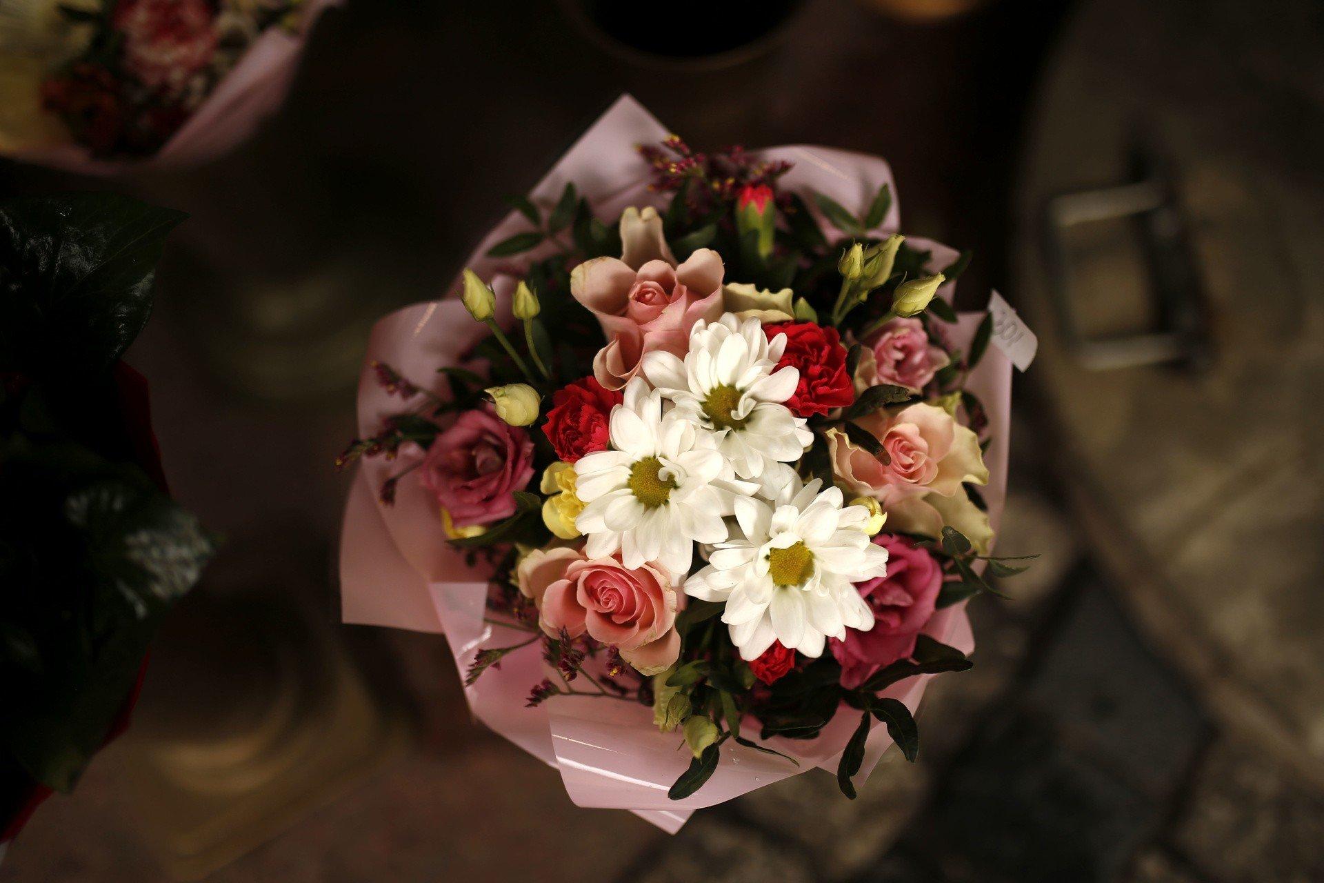 Tu Kupisz Kwiaty Na Balkon I Do Ogrodu Kwiaciarnie Gieldy Wydarzenia Galeria Gazeta Wroclawska