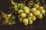 To dzieje się z organizmem gdy jemy winogrona. Kto powinien je włączyć do diety?