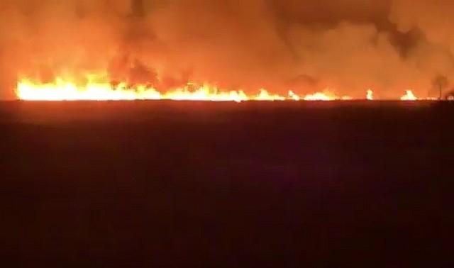 Narwiański Park Narodowy pali się