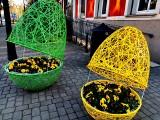 Wielkanocne ozdoby stanęły przed urzędem miejskim w Nowej Soli. Pomysłowe jaja z bratkami podobają się mieszkańcom