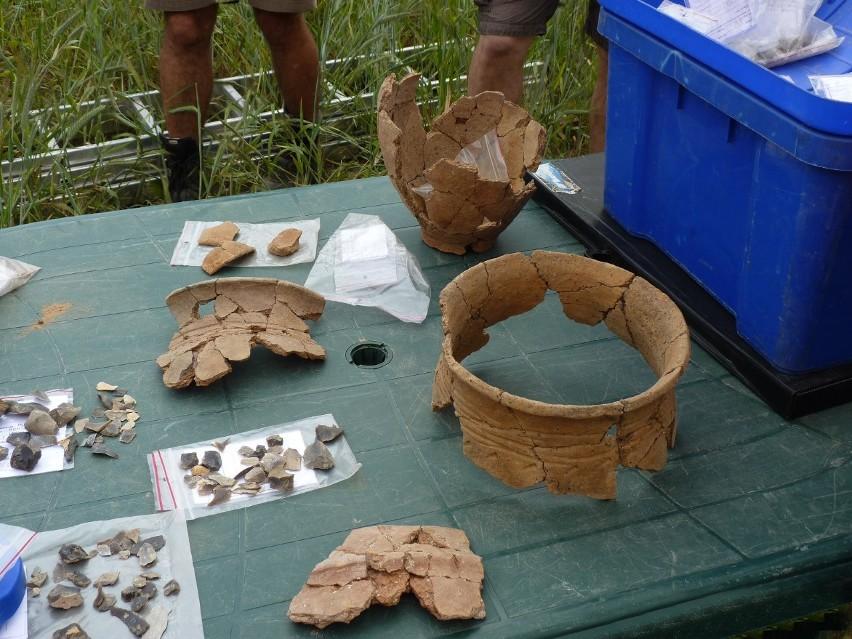 Fragmenty naczyń, odkryte podczas prac archeologicznych na stanowisku Pulki 1. Są datowane na ok. 1500 rok p.n.e.
