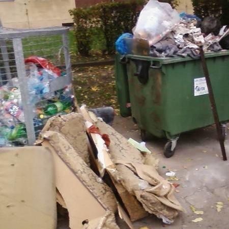 Wyraźnie widać, że sporą część odpadków stanowią resztki po remoncie