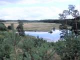 Tajemnica Świętej Studni i krajobraz zachwycający Puszczy Bydgoskiej [zdjęcia]
