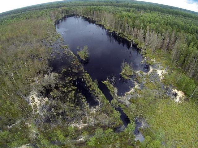 W okresie powojennym część tych terenów została uznana za grunty leśne, chociaż nigdy nie dostarczały one drewna.