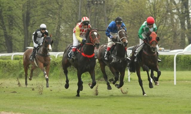 Na Partynicach ścigać się będą konie z Niemiec, polski, Czech oraz Słowacji
