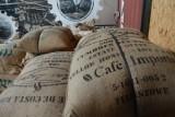 Kawa to drugi najpopularniejszy produkt świata! Każdego dnia wypija się jej średnio dwa miliardy kubków