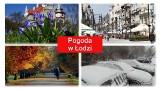 Pogoda w Łodzi w poniedziałek, 12 kwietnia. Wiosna, niestety, nie rozpieszcza