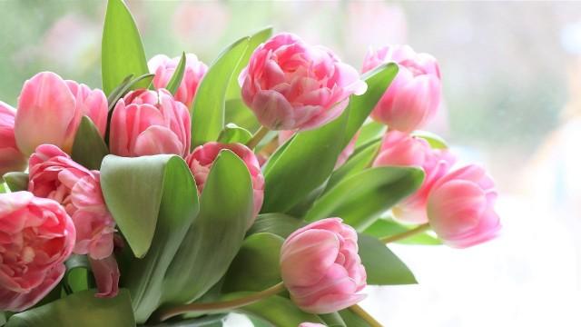 Dzień Kobiet obchodzimy już 8 marca!