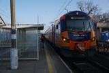 Awaria kolejowa w okolicach Rogoźna. Nie jeżdziły pociągi [ZDJĘCIA]