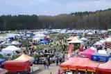 Targi Ogrodniczo-Pszczelarskie w Lubaniu już 8 i 9 kwietnia
