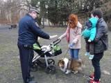 Wrocław: Straż miejska rusza na wojnę z psimi odchodami (ZDJĘCIA)