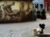 BOB - Psie Biuro Ochrony Bachusików