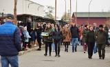 Mnóstwo ludzi na pchlim targu w Tarnobrzegu. Co kupowaliście w niedzielę? [ZDJĘCIA]