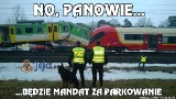 Dzień Kolejarza - najlepsze memy. Opóźnienia pociągów, przestarzałe torowiska, zawodne Pendolino. Z tego śmieją się Internauci [26.11.2019]