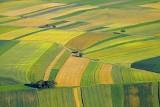 Trwają pilotażowe badania dotyczące rozpoznawania upraw na podstawie zdjęć z satelitów
