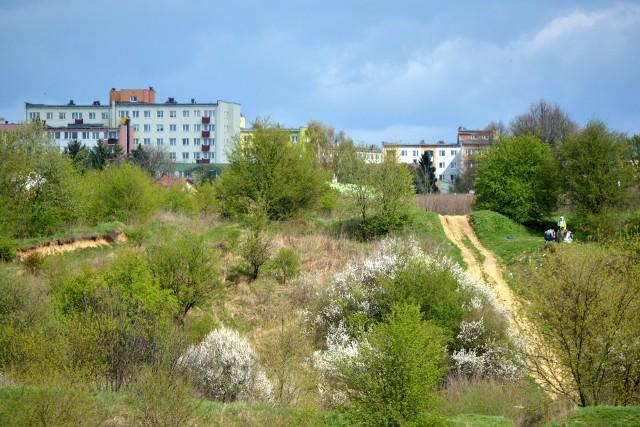 Dawny poligon na Czechowie to ponad 100 hektarów gruntów. Właściciel TBV chciałby zabudować blokami ok. 30 ha