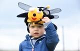 Światowy Dzień Pszczoły w Lubuskim Centrum Winiarstwa w Zaborze. Zobacz co tam się działo
