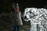 Ostrołęka. Świąteczne dekoracje 2020. Duże podświetlane bombki i niedźwiedzie polarne – nowe ozdoby świąteczne już zamontowane 15.12.2020