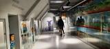 Kilkaset osób na Nocy Muzeów w Bytowie. Niezwykła wystawa Józefa Chełmowskiego  (ZDJĘCIA)