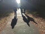 Gm. Otyń. 79-letnia zaginęła ponad tydzień temu. Sprawdzone zostały pobliskie akweny i lasy. Policja i rodzina apelują o pomoc