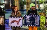 Klatka po klatce w Bydgoszczy, czyli protest w obronie zwierząt hodowanych na futra [zdjęcia]