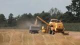 Poszkodowani rolnicy czekają na szacowanie strat po suszy. I na komisje
