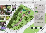 W Rzeszowie powstaną nowe ogrody kieszonkowe. Będzie mnóstwo roślin miododajnych