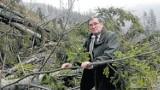 Kataklizm w Beskidach: Halny łamał drzewa. Straty są ogromne [ZOBACZ ZDJĘCIA]