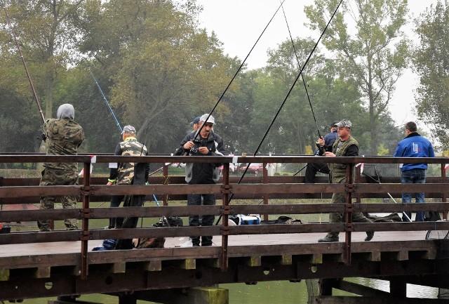 Na stawach w inowrocławskim Parku Solankowym odbyły się doroczne zawody wędkarskie. Imprezę zorganizowało Przedsiębiorstwo Gospodarki Komunalnej i Mieszkaniowej.  Na taaaką rybę zasadzili się tam wędkarze z wieloletnim stażem, a także dzieci i młodzież.