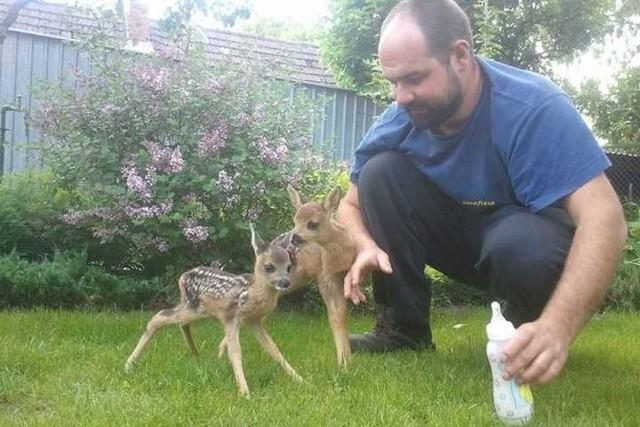 Michał Kudawski pomaga dzikim zwierzątom.