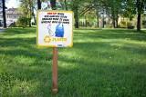 Dzień bez Śmiecenia w Stalowej Woli. W mieście pojawią się tabliczki edukacyjne