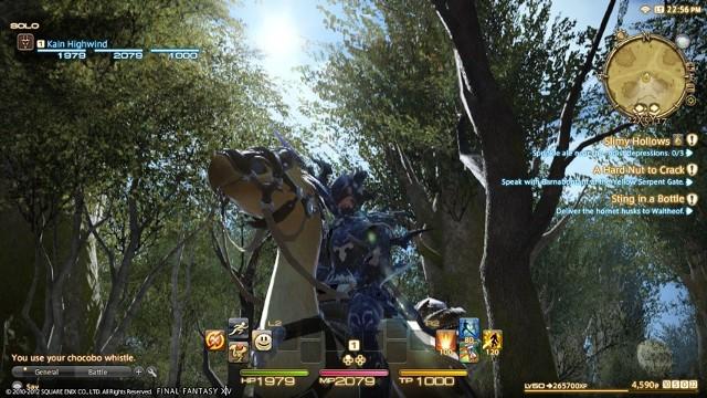 Final Fantasy XIV: A Realm RebornFinal Fantasy XIV: A Realm Reborn