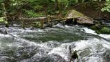 Drawieński Park Narodowy ma już 30 lat. O czym w tym pięknym królestwie natury szumi woda…