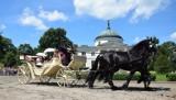 W Lubostroniu trwa XXII Konkurs Pojazdów Konnych. Za nami konkurencja pokaz [zdjęcia]