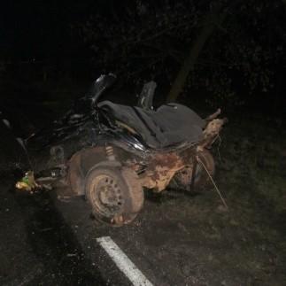 BMW rozpadło się, przełamało na dwie części. Jedna z nich, przednia  jeszcze jechała i zatrzymała się dopiero na bramie wjazdowej do jednego z okolicznych sadów. Cztery podróżujące w BMW osoby poniosły śmierć na miejscu, piąta przebywa w szpitalu.