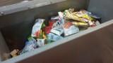 Coraz więcej Polaków segreguje śmieci