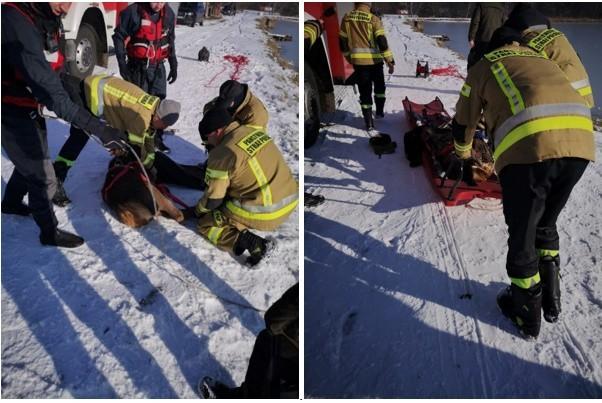 W akcji ratunkowej pomogli strażacy.