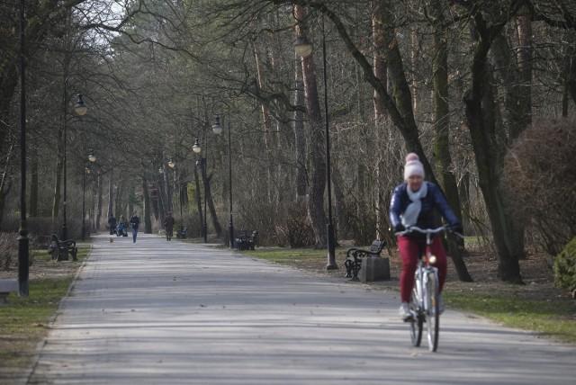 Park Miejski na Bydgoskim Przedmieściu to największy i najstarszy park w Toruniu. Już wkrótce znów się zazieleni