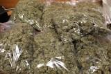 Narkotyki za ponad milion złotych przechowywali w piwnicy na Bronowicach w Lublinie