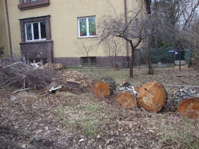 ul. Dembowskiego 31, róg ul.Kosiby