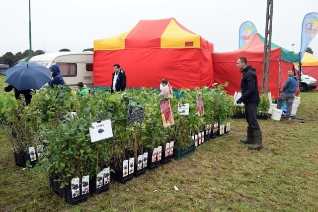Targi rolne w Barzkowicach odbywają się we wrześniu.