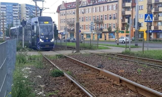Torowisko tramwajowe na ulicy Żmigrodzkiej we Wrocławiu.