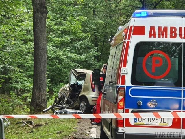 Jedna osoba zginęła w wypadku pod Turawą.