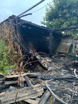 Pożar tartaku w Dąbrowie Wielkiej Kalinkach. To było podpalenie? ZDJĘCIA