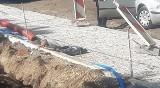 Znaleziono szczątki ludzkie w pobliżu centrum Gdańska. Mogą mieć ok. 100 lat
