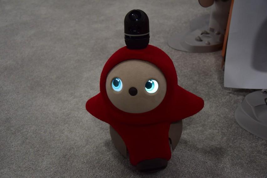 Japoński robot Lobot nie wykonuje żadnych czynności. Ma jedynie służyć do zaspokajania potrzeb uczuciowych. To najmilszy robot, jaki wyprodukowano. Jest miły w dotyku, ciepły, gdy się go przytula, podąża za swoim panem/panią w domu i popiskuje jak mały szczeniaczek. Polecany dla rosnącej liczby osób samotnych