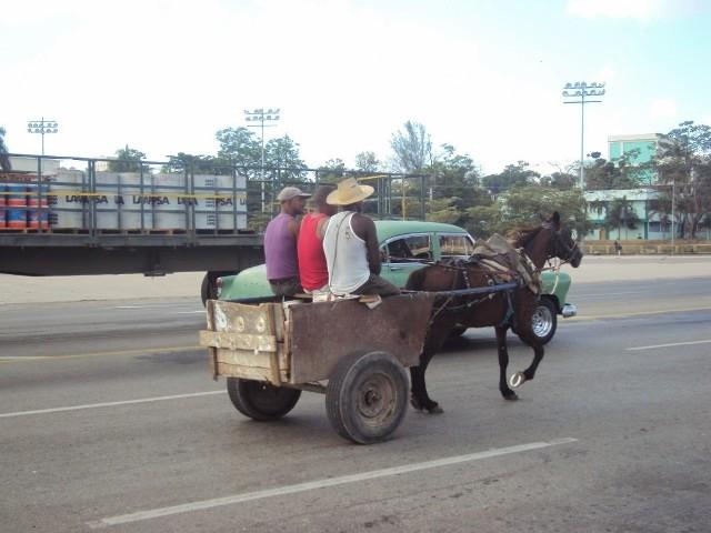 """Własny wóz i własny koń to wielkie szczęście. Wtedy Kubańczyk nie musi czekać na autobus czy pomoc """"żółtego urzędnika"""". Jedzie gdzie chce i kiedy chce"""