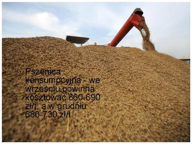 Sytuacje na rynkach rolnych przeanalizowali eksperci powołani przez prezesa ARR